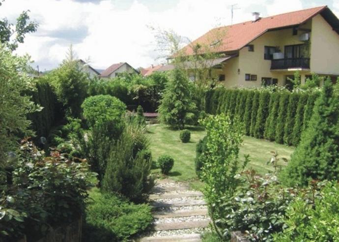 vrtovi eucaliptus izrada vrta