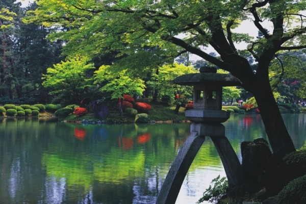 Vrtovi Eucaliptus  Japanski vrtovi
